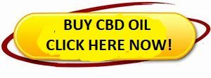 Buy Pet Hemp CBD OIL in Goderich