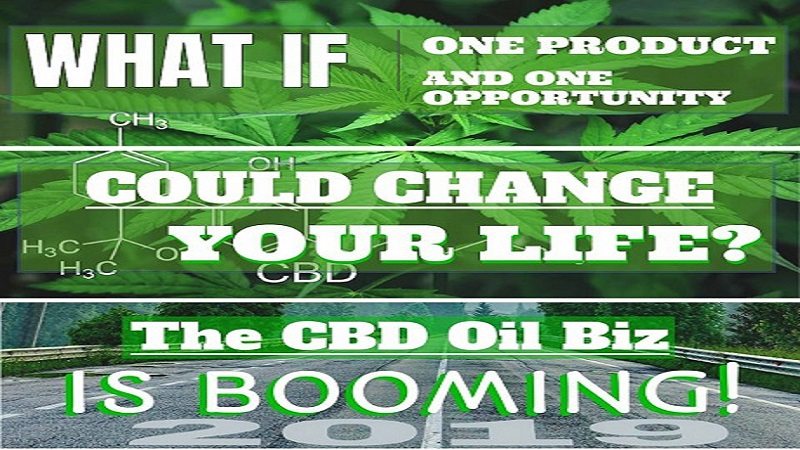 Why You Should Have a CBD Oil Business - By David D'Arcangelo